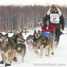 Lance Mackey Wins Forth Iditarod