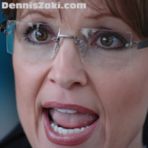 Palin's divorce